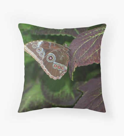 Illusive Butterfly Throw Pillow