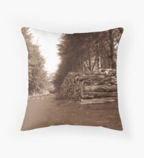 Woodcraft in B@W Throw Pillow