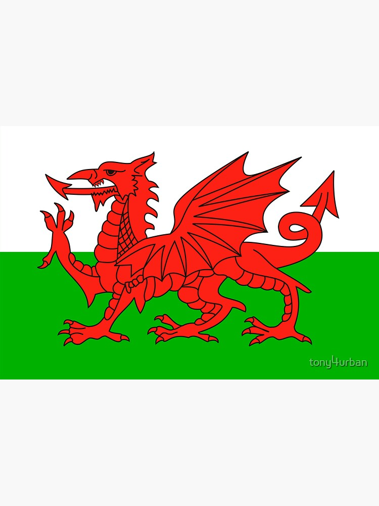 wales flag by tony4urban