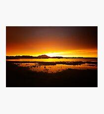 Willow Lake Orange Photographic Print