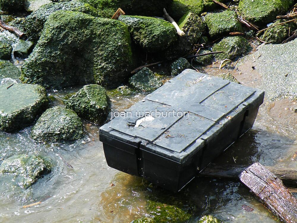 Treasure Chest Washes Ashore by joan warburton
