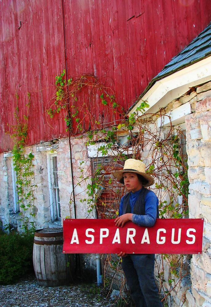 The Asparagus Boy by Kam Johnson