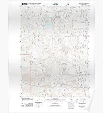 USGS Topo Map Oregon Willow Lake 20110808 TM Poster