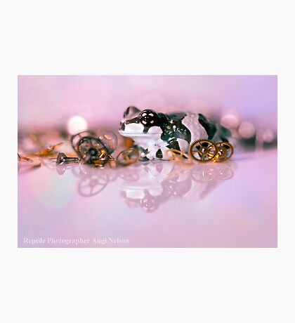 Steampunk frog Photographic Print