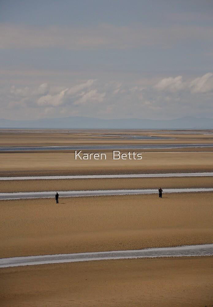 Silver streaks   by Karen  Betts