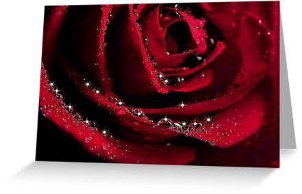 GLITTER  ROSE * by RoseMarie747