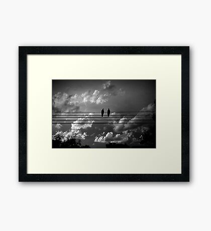 Evening chat on F Framed Print