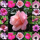 Pretty-in-Pink Flowers Collage by BlueMoonRose