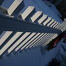 White Picket Fences by LisaJPortelli