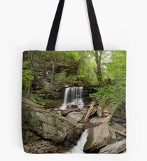 B. Reynolds Falls Tote Bag