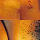 Traces on Skin by Victoria limerick