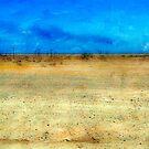 Horizon by Mary Ann Reilly