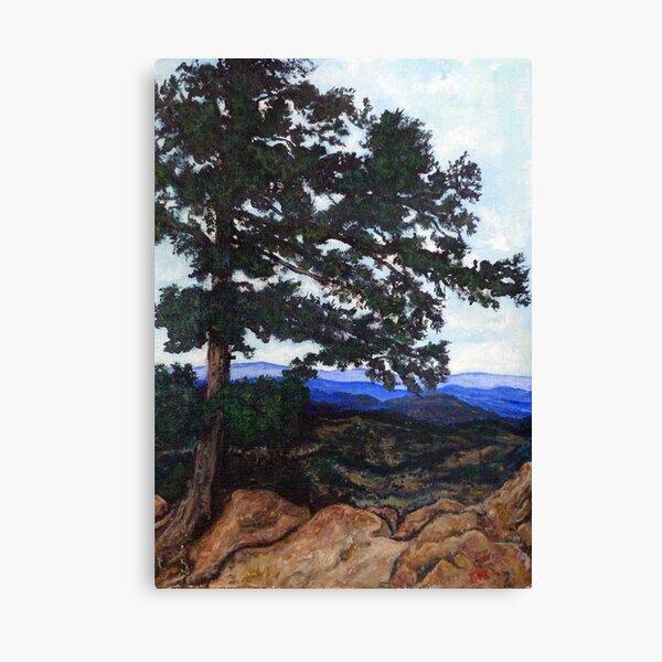 Flagstaff Mountain Tree Canvas Print