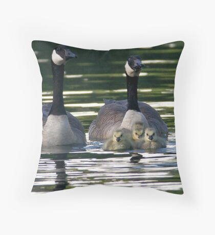 Wary Eyes Throw Pillow