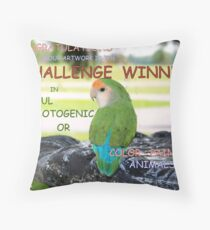 CHALLENGE WINNER BANNER Throw Pillow