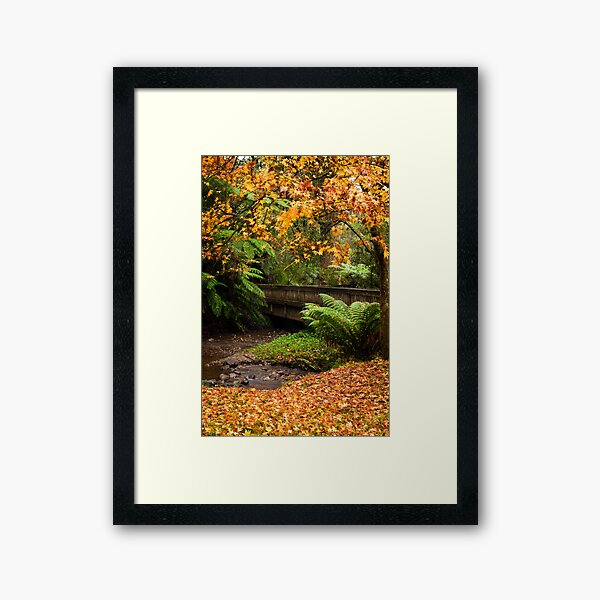 Autumn display Framed Art Print