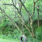Wonder If My Rope's Still Hangin' To The Tree by Hank Eder