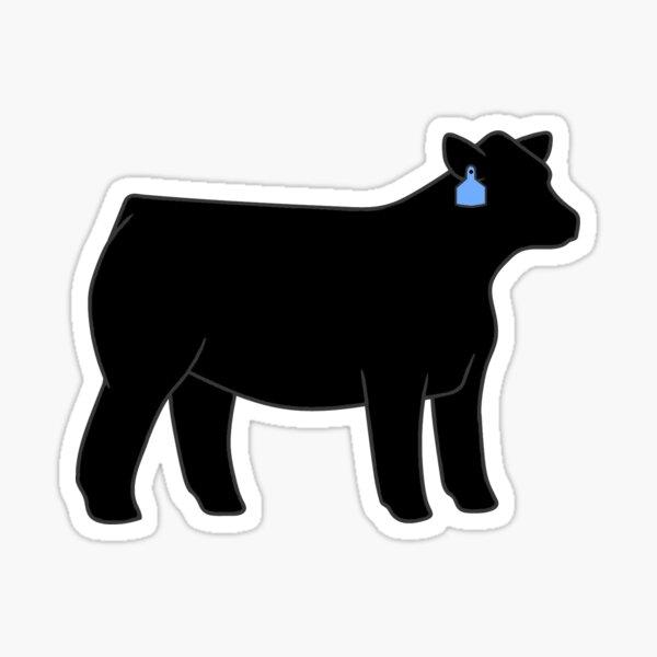 Black Angus Heifer Sticker