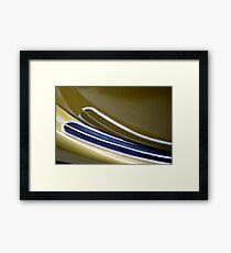 Cat Sweep Framed Print