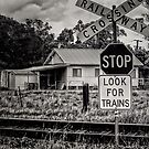 Look For Trains by wallarooimages