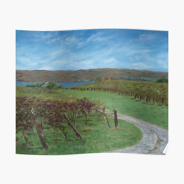 Vineyard Overlooking Lake Poster
