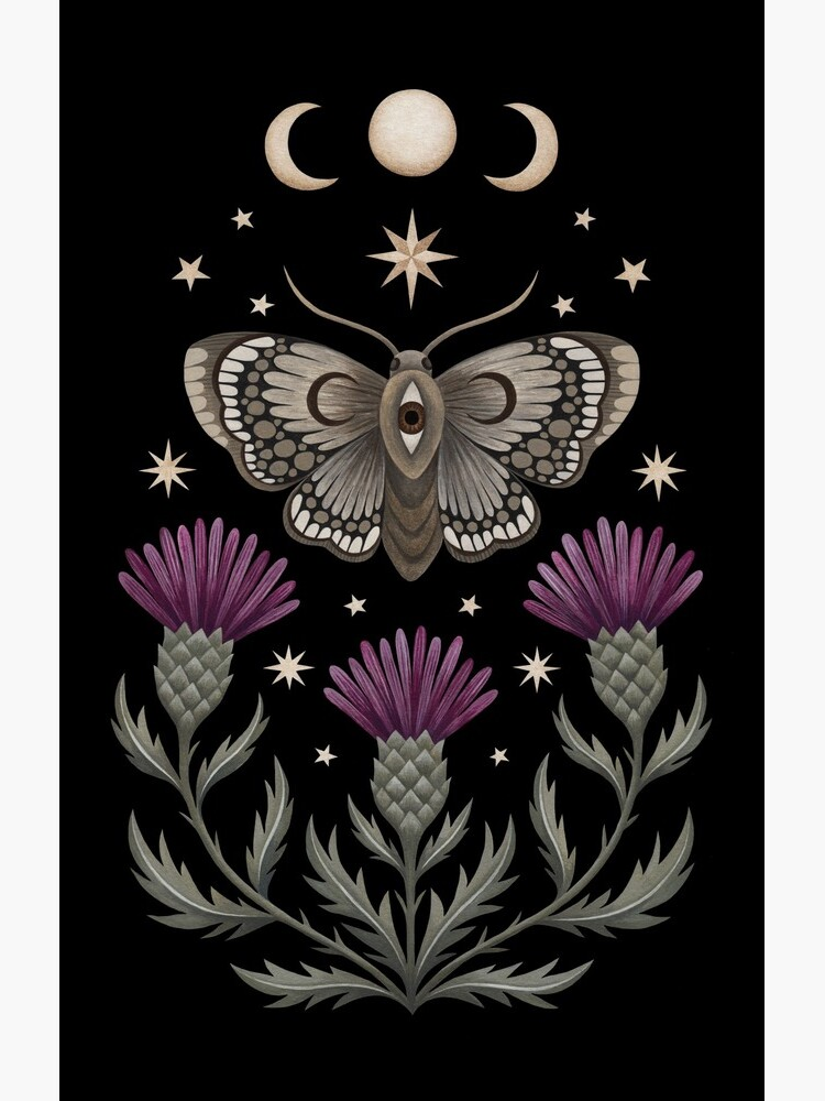 Thistle and moth by Laorel