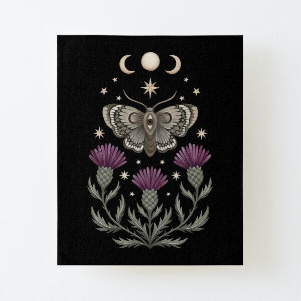 Thistle and moth Canvas Mounted Print