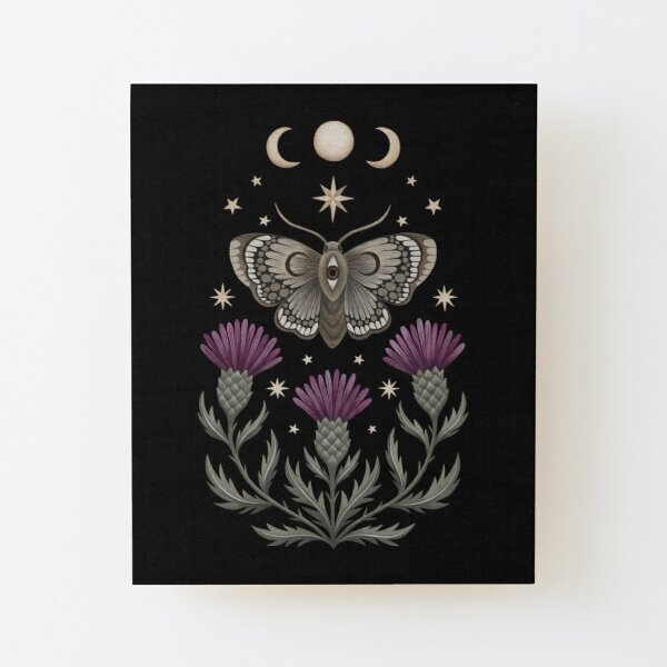 Thistle and moth Wood Mounted Print