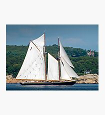 Bluenose II Sail into Gloucester Harbor Photographic Print