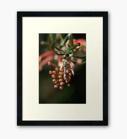 Lots of Fingers Framed Print