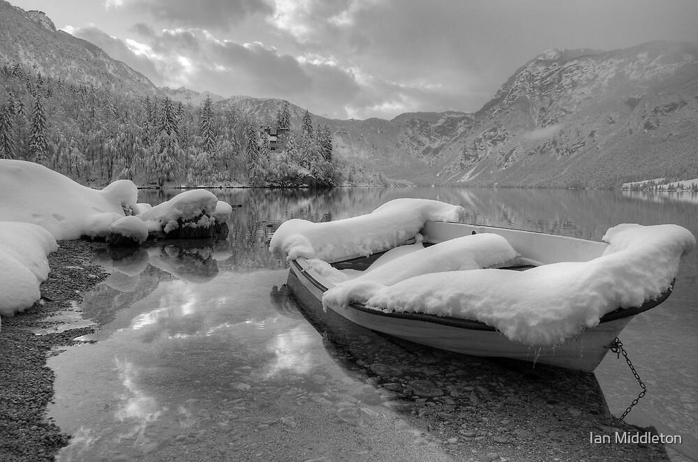 Lake Bohinj in Winter, Slovenia by Ian Middleton