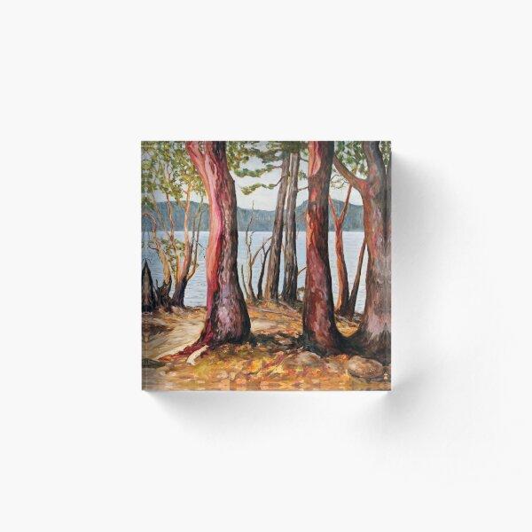 Morning With Arbutus Trees Acrylic Block