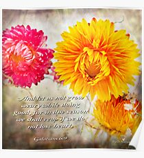 Let us not grow weary... Poster