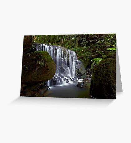 Leura Fun Greeting Card