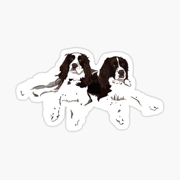 Springer Spaniel Buddies Sticker