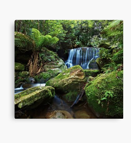 Moss on the Rock - Lurinda Falls  Canvas Print