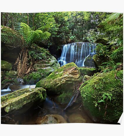Moss on the Rock - Lurinda Falls  Poster