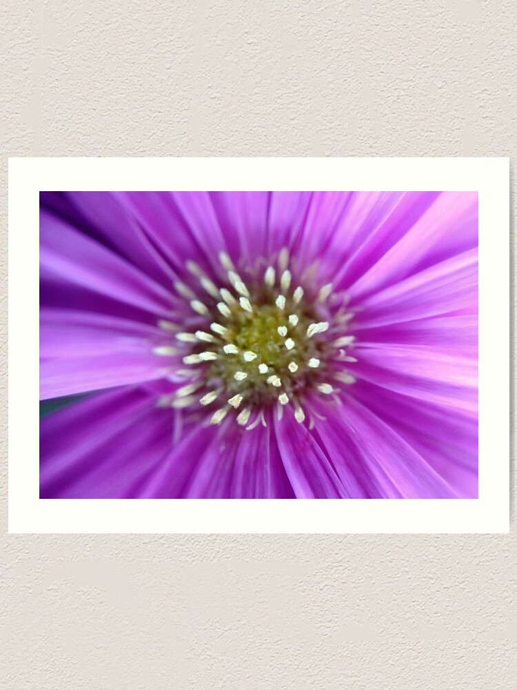 Alternate view of Purple Sun Art Print