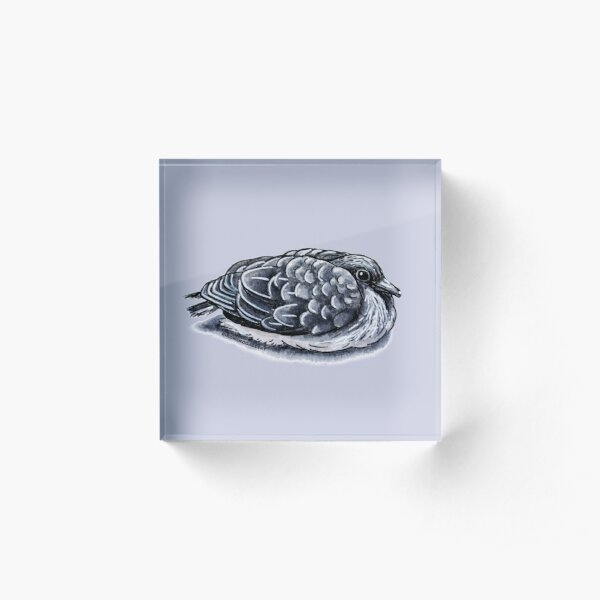 Little Dove Ink Drawing Acrylic Block