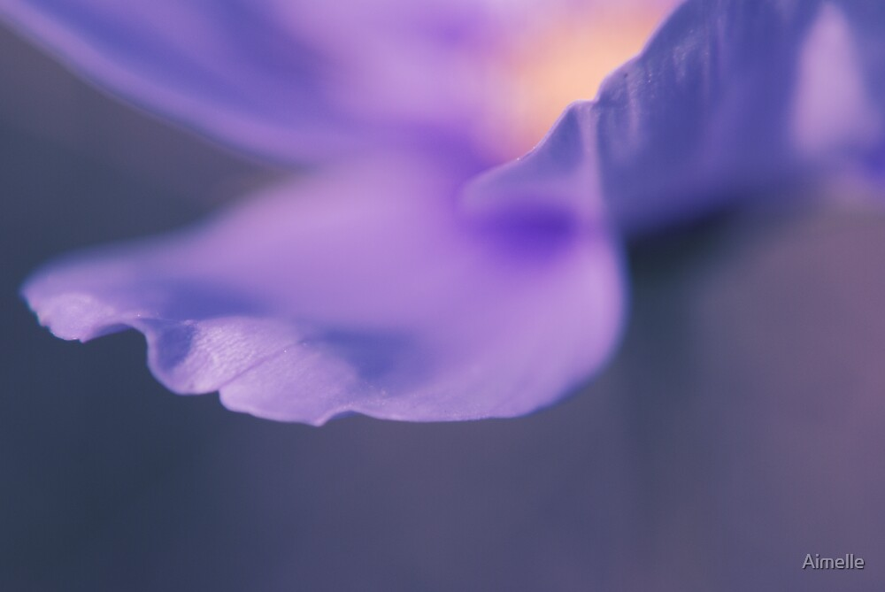 purple identity (Mallow) by Aimelle