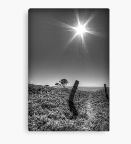Leaning Post Canvas Print