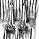 Forks by tlees
