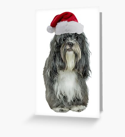 Tibetan Terrier Christmas Greeting Card