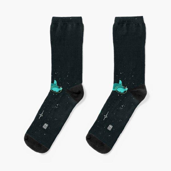 Space Turtles Socks