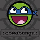 «Cowabunga Buddy Squad: Leonardo» de Cowabunga