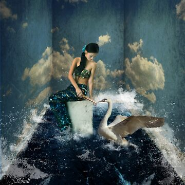 The Mermaid's Dream by shall