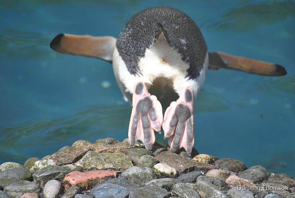 Happy Feet by Dorothy Thomson