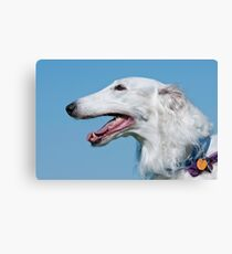 Russian Wolfhound Canvas Print