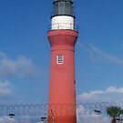 St. John's River Lighthouse by Laurie Perry