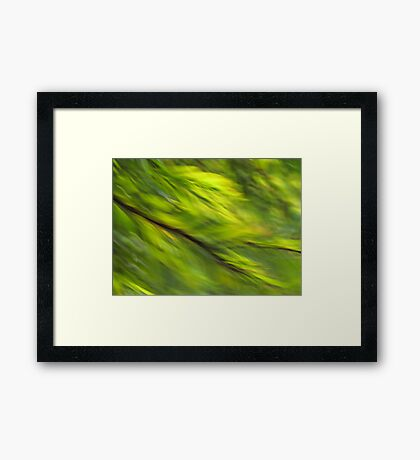 Winter Green Framed Print